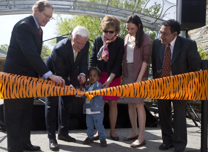 Opening of Big Cat Crossing at Philadelphia Zoo