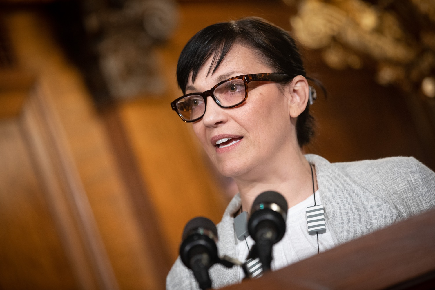 "<a href=""http://filesource.abacast.com/commonwealthofpa/photo/17554_gov_voter_reform_bill_dz_009.jpg"" target=""_blank"">⇣ Download Photo<br></a>Harrisburg, PA.  Elizabeth Randol, Legislative Director of the ACLU speaking at the bill signing. Governor Wolf made voting more convenient and secure by signing Act 77 of 2019, the most significant improvement to Pennsylvanias elections in more than 80 years. The bipartisan compromise legislation takes effect for the April 2020 primary election and makes Pennsylvania a national leader with voter-friendly election reforms."