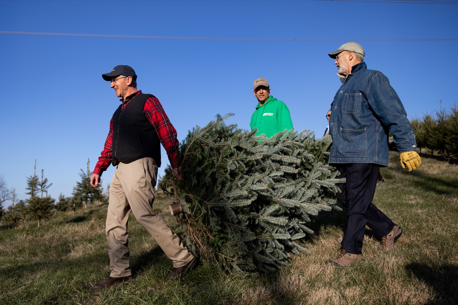 """<a href=""""http://filesource.abacast.com/commonwealthofpa/photo/17615_GOV_AGRIC_Christmas_Trees_NK_003.JPG"""" target=""""_blank"""">⇣Download Photo<br></a>Pennsylvania Governor Tom Wolf, right, Pennsylvania Agriculture Secretary Russell Redding, left, and Mark McCurdy, owner of McCurdy's Tree Farm & Landscaping, carry out a Christmas Tree on Monday, November 25, 2019."""